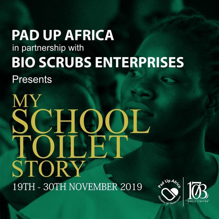 My School Toilet Story